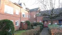 Studio flat to rent in Seymour Court