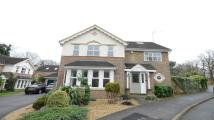 5 bedroom Detached property in Royal Oak Drive
