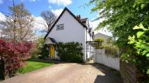 Detached home to rent in Hatch Ride