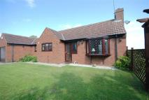 Bungalow for sale in Castle Drive, Epworth...