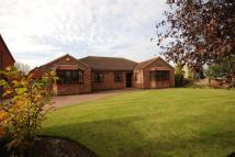 Bungalow for sale in Belton Road, Beltoft...