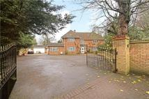 Detached property to rent in Medina Road, London, N7