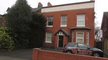 Park Road Studio apartment to rent