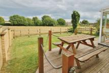 4 bed Detached house for sale in Springfield Road...