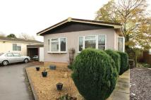 Detached Bungalow in Wildwood Park...