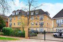Flat for sale in The Avenue, Beckenham...