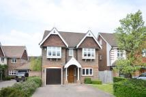 4 bedroom property in Limewood Close...