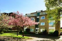 Flat for sale in Albemarle Road...