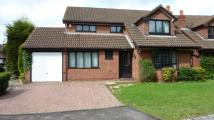 Hollyoak Grove Detached property to rent
