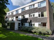 Milcote Road Apartment to rent