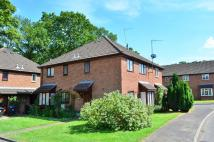 property to rent in Langtons Meadow...