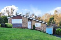 Bungalow to rent in Runrig Hill...