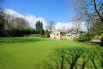 Detached Bungalow for sale in Chapel Lane, Penistone...