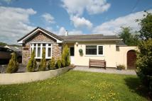 Bungalow to rent in Gunnislake