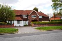 Detached house to rent in Grimwade Avenue Croydon...
