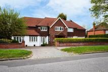 Detached property to rent in Grimwade Avenue Croydon...