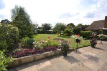 Bungalow for sale in Rose Dale Orpington BR6