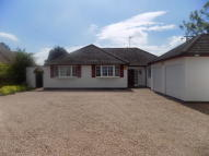 Detached Bungalow in Main Road, Ansty...