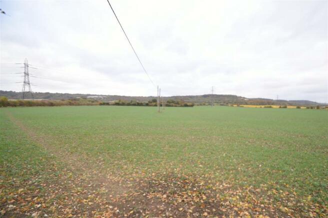 View of Land (2).JPG