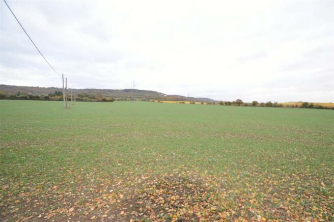View of Land (4).JPG