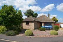 Detached Bungalow in Pingle Lane...