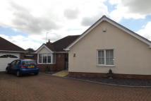 Bungalow to rent in Sandiacre Lane...