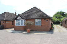 3 bedroom Detached Bungalow for sale in Tye Green, Cressing, CM77