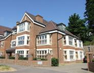 2 bed Apartment in Kingswood