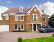 6 bedroom Detached property to rent in Kingswood