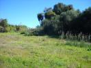 Land for sale in Cádiz, SOTOGRANDE...