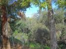 Cádiz Land for sale