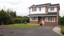 4 bedroom Detached property for sale in Canon Grove, Yarm...
