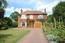 4 bed Detached house in Diss, Norfolk