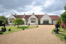 3 bedroom Detached Bungalow for sale in Brome, Suffolk