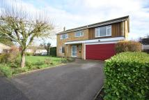 Detached property in Diss, Norfolk