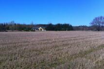 Land at Netherbrae Land