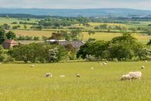 Lot 2 Farm Land for sale