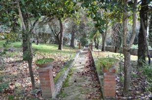 Path to orangery