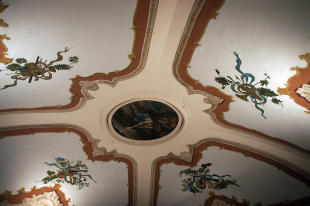 Ceiling fresco salon