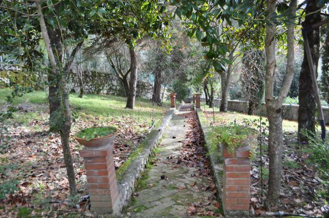 Path to orangery