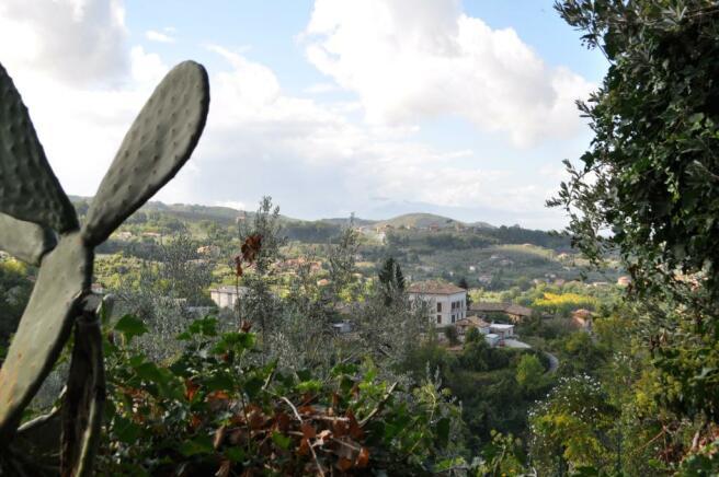 Secret garden views