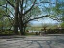 Lake Posta Fibreno