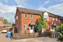Terraced property to rent in Lavender Road...