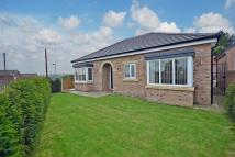 3 bedroom Detached Bungalow for sale in Gypsy Lane, Townville...