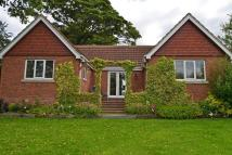 George Street Detached Bungalow for sale