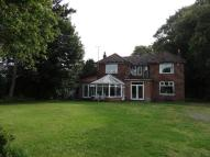 4 bed Detached house to rent in Hull Road,  Cottingham...