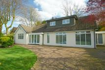 Detached Bungalow in Parklands, Whitefield...