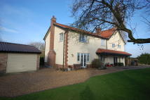 4 bed Detached house for sale in The Fen, Banham, Norwich