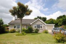 Detached Bungalow in Week St Mary, Devon