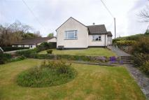 2 bed Detached Bungalow to rent in Diddies, Bude, Cornwall